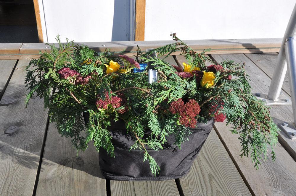 Pappas urna omgiven av blommor