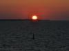 Solnedgång tagen från färjan till Sverige